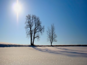 Radiante sol
