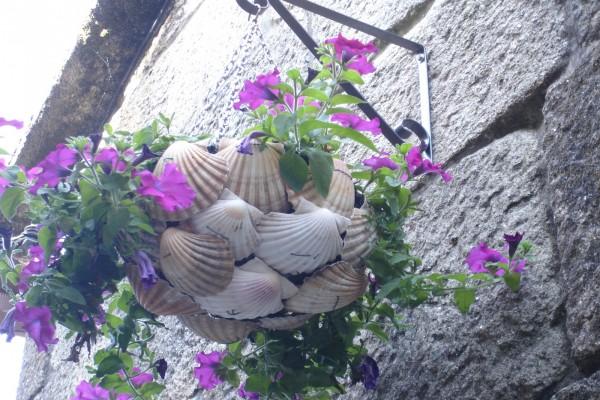Flores en un macetero de conchas