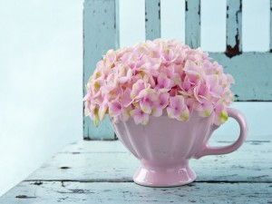 Postal: Flores rosas en un copón