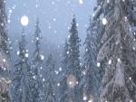 Brillantes copos de nieve