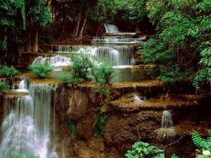 Cascadas entre hierbas y rocas