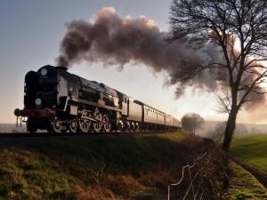 Postal: Tren atravesando un campo