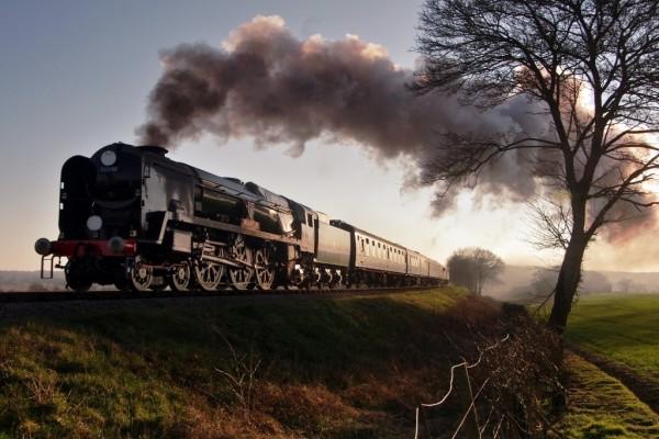 Tren atravesando un campo