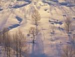 Paisaje nevado iluminado por el sol