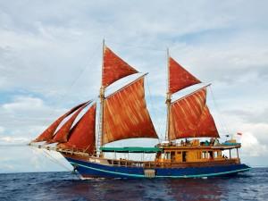 Postal: Bonito barco: Tiger Blue