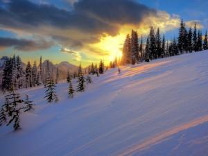 Postal: Un bonito amanecer en la nieve