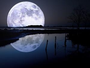 Luna llena reflejada en el agua