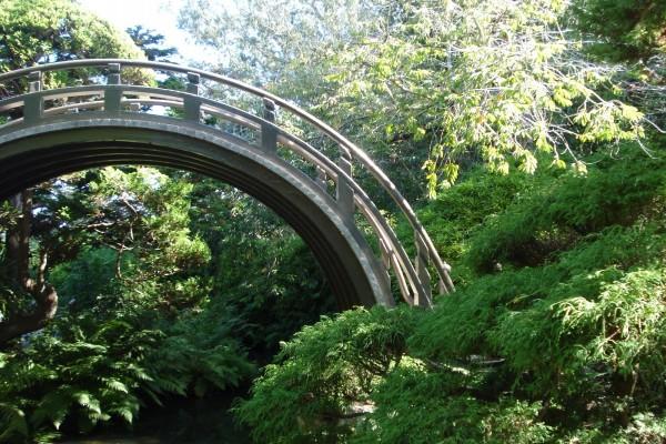 Bonito puente rodeado de naturaleza