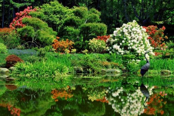 Bonito y cuidado jardín