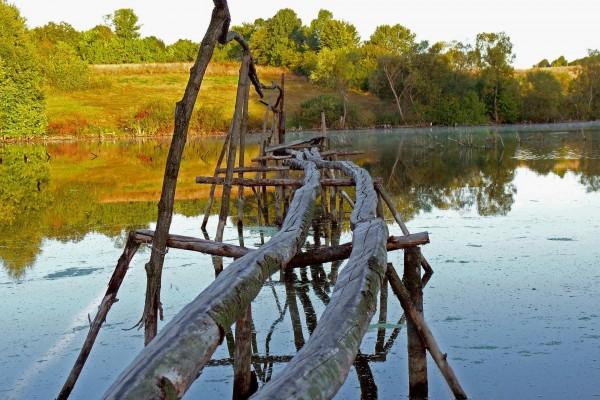 Puente de palos sobre el lago
