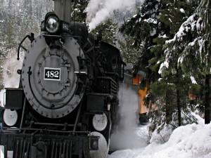 Postal: Tren en el bosque nevado