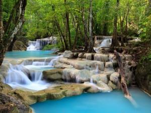 Postal: Cascadas de aguas transparentes entre rocas y árboles