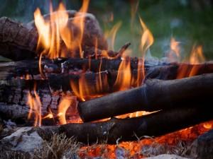 Postal: Leños en el fuego