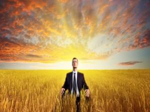 Ejecutivo meditando entre el trigo
