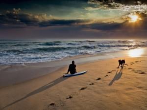 Postal: Un hombre y un perro a orillas del mar