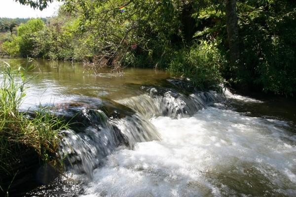 En el río un día soleado