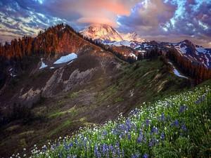 Flores y montañas bajo un cielo nuboso