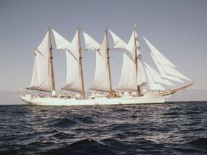 Barco blanco navegando