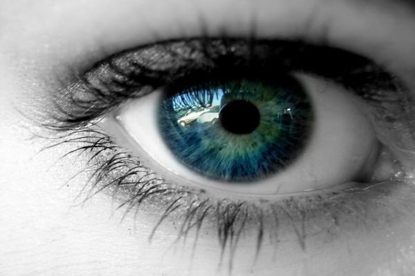 Lo que el ojo ve