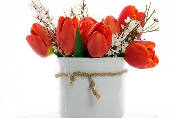 Jarrón con tulipanes rojos