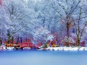 Espectacular paisaje con nieve