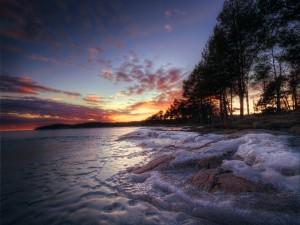 Orilla de un río congelada