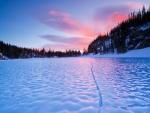 Amanecer en el hielo