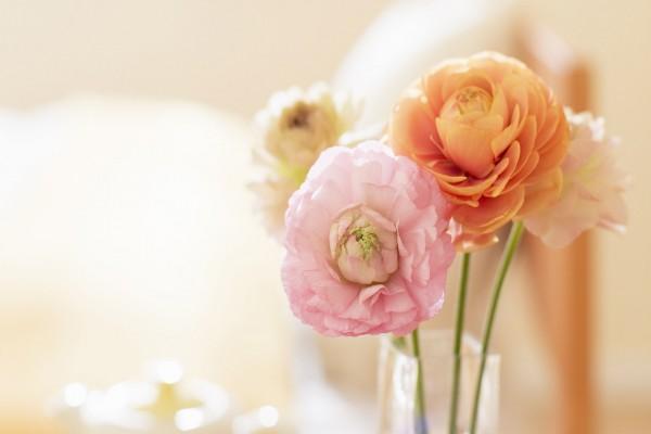 Flores en un jarrón de cristal
