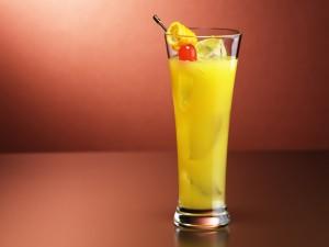 Bebida refrescante de frutas