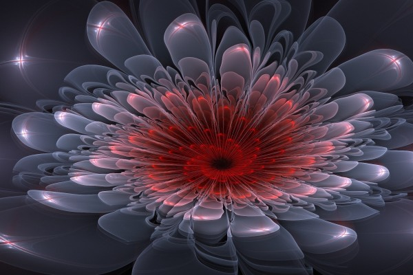 Bonita flor digital