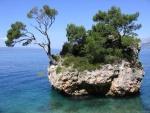 Gran roca con árboles en el mar