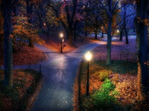 Parque en otoño visto al anochecer