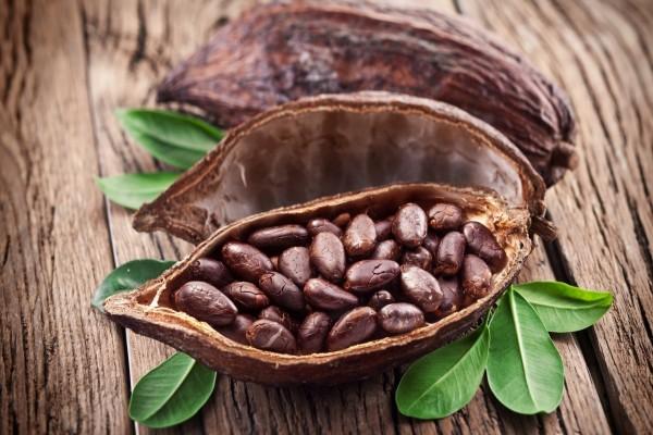Semillas de cacao y hojas verdes