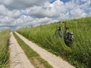 Bicicleta apartada del camino