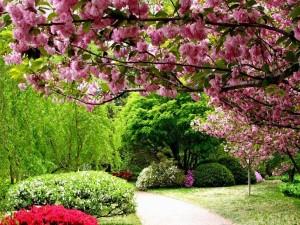 Postal: Paseo por el jardín