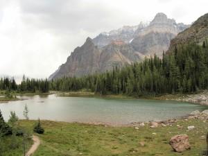 Un lago entre pinos y montañas