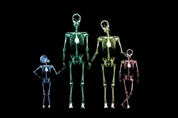 Radiografía familiar