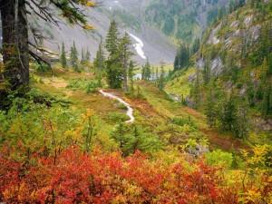Postal: Un día de otoño