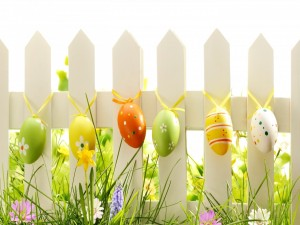 Postal: Huevos de Pascua colgados de una cerca de madera