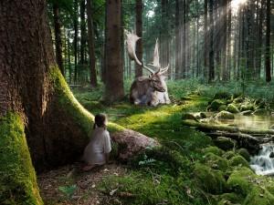 Postal: Niña en el bosque