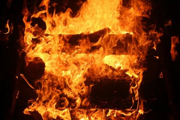 Troncos en el fuego