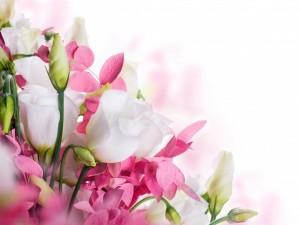 Flores blancas y rosas