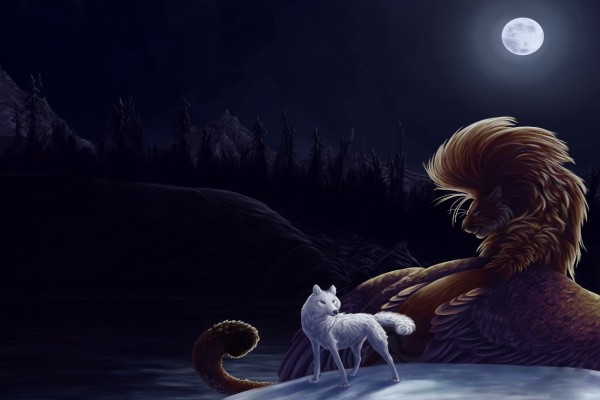 Animales en una noche de luna llena