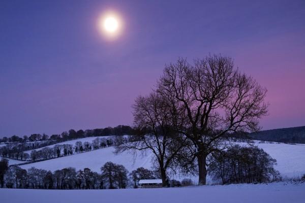 El brillo de la luna en un paisaje nevado