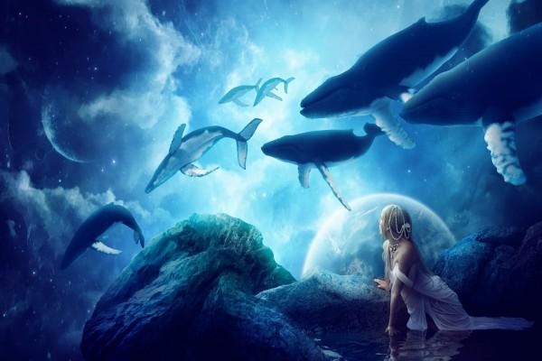 Mujer contemplando las ballenas