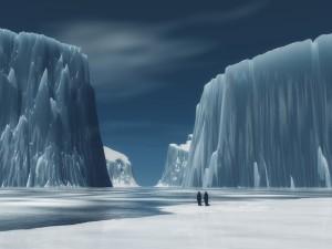 Pingüinos solitarios en el hielo