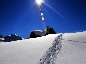 Postal: Pisadas en la nieve frente a una casa