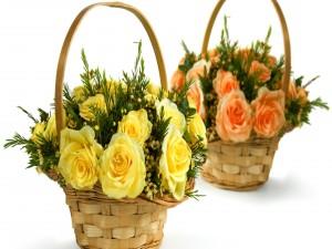 Postal: Rosas amarillas y naranjas