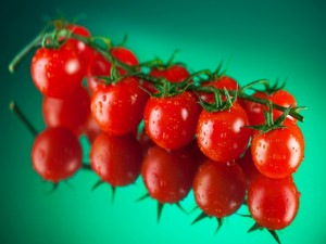 Postal: Tomates en rama