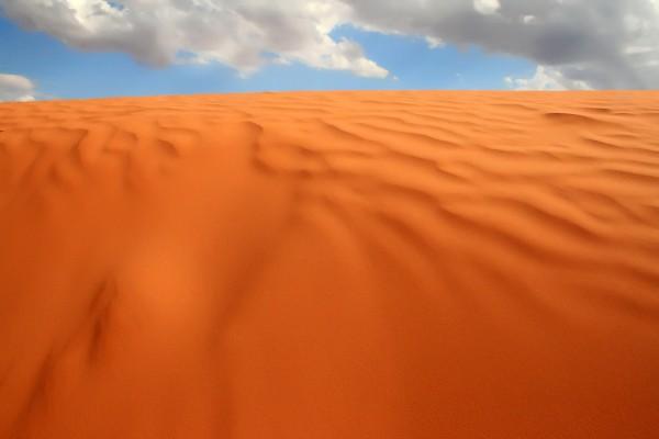 La tostada arena del desierto